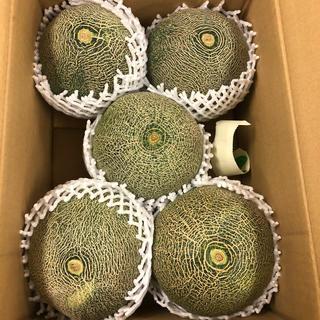 茨城県産タカミメロン1箱5個入り2L④(フルーツ)