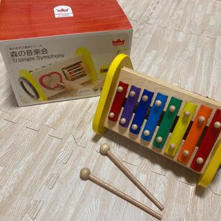 BorneLund - Ed.Inter 森の音楽会 鉄琴 知育玩具 木製玩具 楽器