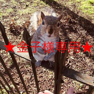 金子様専用ページ(レインブーツ/長靴)