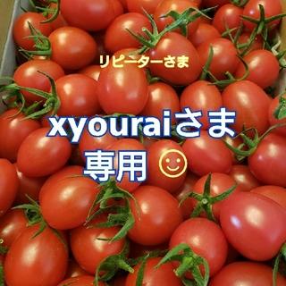 4kg  xyouraiさま専用です☺ ミニトマト(野菜)