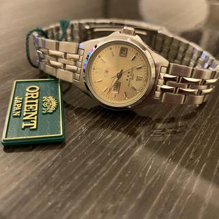 オリエント(ORIENT)のオリエント レディース ウォッチ ブランド(腕時計)