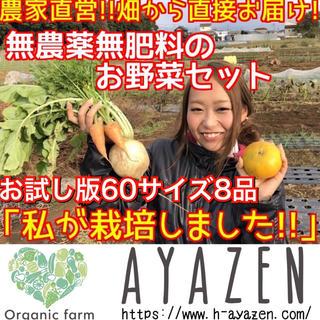 農薬・肥料不使用の野球セット お試し版(野菜)