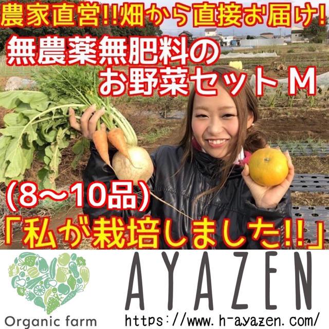 農薬・肥料不使用の野球セット M 8〜10品 食品/飲料/酒の食品(野菜)の商品写真