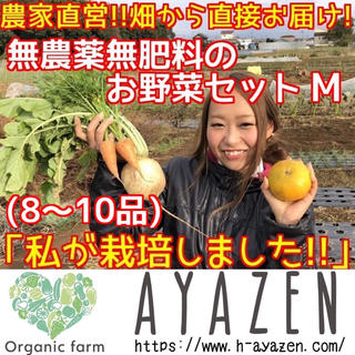 農薬・肥料不使用の野球セット M 8〜10品(野菜)
