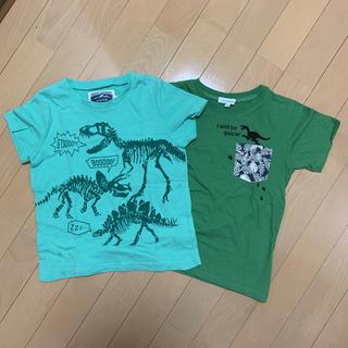 エニィファム(anyFAM)の美品 恐竜 Tシャツ 120(Tシャツ/カットソー)
