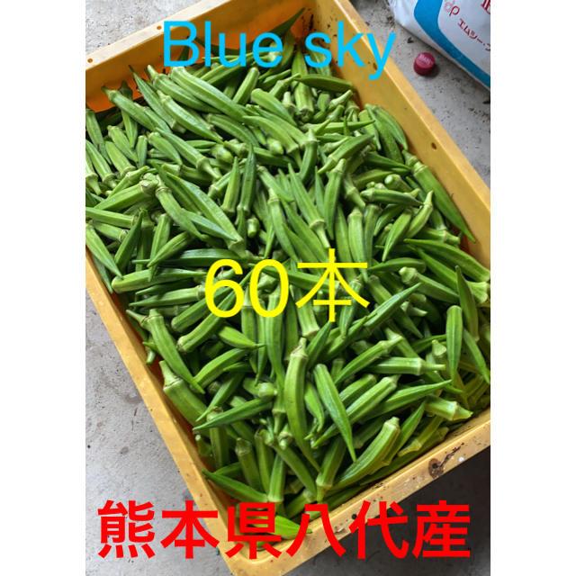 熊本県八代産オクラ(ブルースカイ) 食品/飲料/酒の食品(野菜)の商品写真