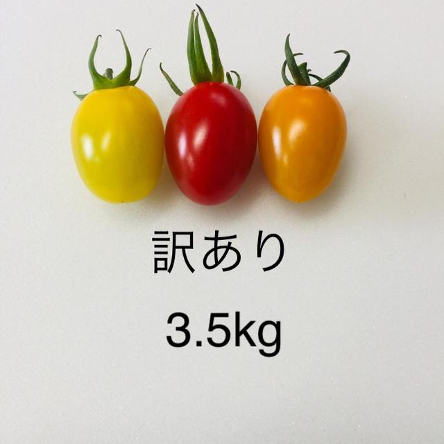 訳あり アイコ 3種 3.5kg  食品/飲料/酒の食品(野菜)の商品写真