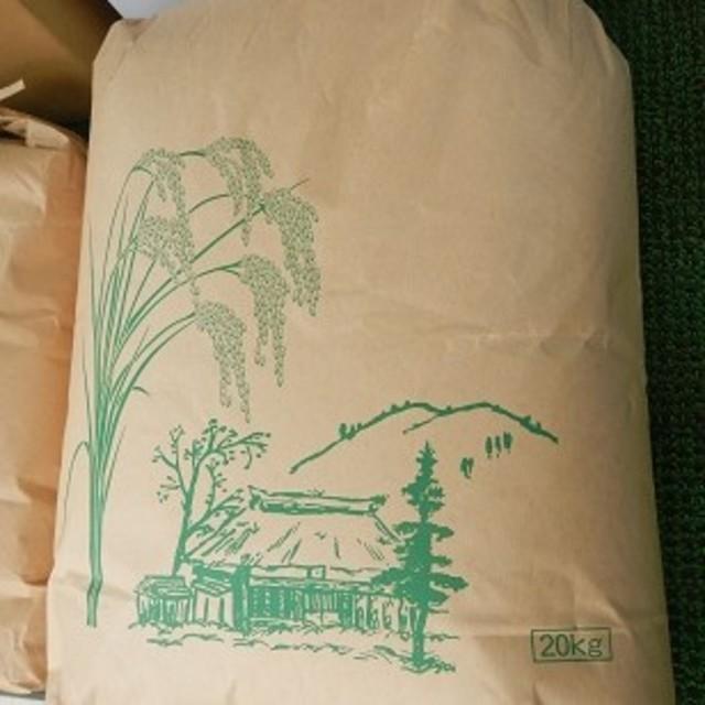 マロン様専用 コシヒカリ白米18㎏(3袋に小分け) 食品/飲料/酒の食品(米/穀物)の商品写真