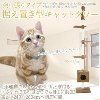 新品★キャットタワー 突っ張りタイプ ベージュ /p(猫)