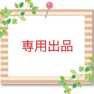 《プリン様専用》2020年スケジュール帳(カレンダー/スケジュール)