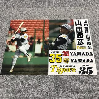 阪神タイガース - 激レア!阪神 山田勝彦 タイガース ステッカーシール シート プロ野球