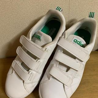 アディダス(adidas)のアディダス neo  ベロクロ 24cm(スニーカー)