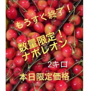 山形県産さくらんぼ ナポレオン 2キロ(フルーツ)