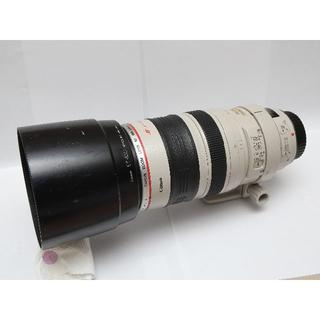 Canon - EF100-400mm F4.5-5.6L IS USM