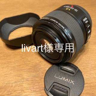 Panasonic - パナソニック LEICA DG MACRO-ELMARIT 45mm F2.8