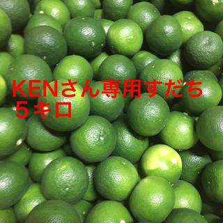 kenさん専用 スダチ5キロ 送料込み(野菜)