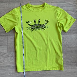 patagonia - patagonia  L/12  Tシャツ