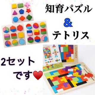 お得♡ モンテッソーリ  3枚セットとテトリスパズル 木のおもちゃ 知育玩具