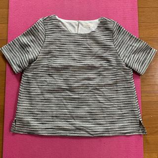 テチチ(Techichi)の新品未使用 タグ付き ボーダー ツィードプルオーバー カットソー Tシャツ(カットソー(半袖/袖なし))