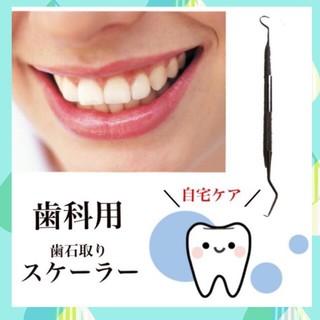 スケーラー 歯石取り 歯医者 歯科医 歯磨き オーラルケア(歯ブラシ/デンタルフロス)
