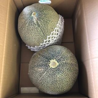 超大玉!茨城県産タカミメロン1箱2個入り②(フルーツ)