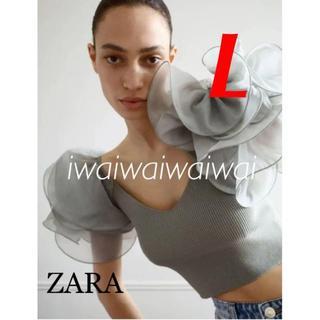 ザラ(ZARA)の新品 ZARA L オーガンザ素材スリーブ トップス(シャツ/ブラウス(半袖/袖なし))