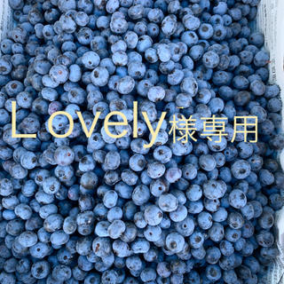 生ブルーベリー 1キロ Lovely様専用(フルーツ)
