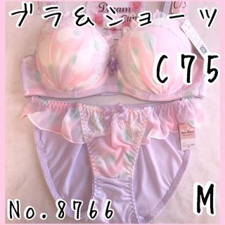 ブラ&ショーツセットC75     No.8766(ブラ&ショーツセット)