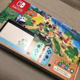 Nintendo Switch - そら様 スイッチ どうぶつの森セット