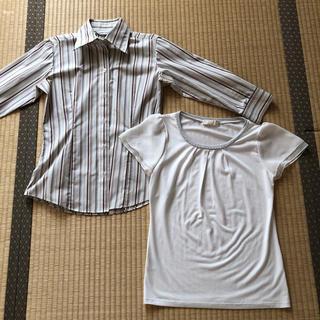 anySiS - 七分袖シャツ&半袖トップス