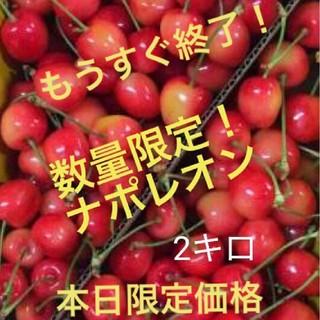 お買い得!山形県産さくらんぼ ナポレオン 2キロ(フルーツ)