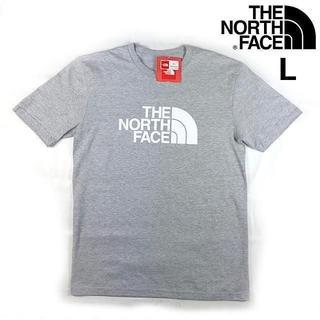 ザノースフェイス(THE NORTH FACE)のノースフェイス IRREGULAR 半袖Tシャツ(L)グレー 180902(Tシャツ/カットソー(半袖/袖なし))
