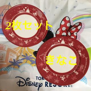 Disney - ディズニー パークフード プレート 17cm メラミンプレートTDR