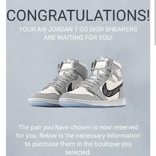 NIKE - Air Jordan OG Dior 46 29cm