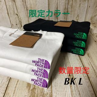 THE NORTH FACE - THE NORTH FACE ノースフェイス シンプルロゴ 限定Tシャツ BKL