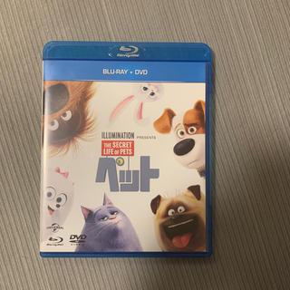 ユニバーサルエンターテインメント(UNIVERSAL ENTERTAINMENT)のペット ブルーレイ+DVDセット Blu-ray(キッズ/ファミリー)
