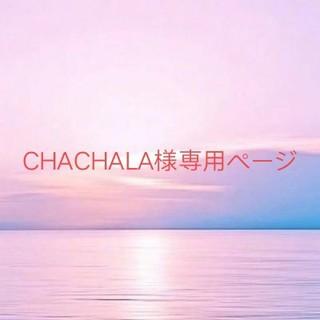 CHACHALA様専用ページ(小物入れ)