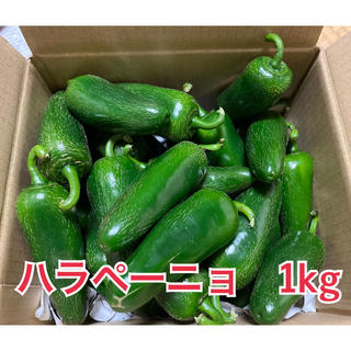 ハラペーニョ 1kg(野菜)