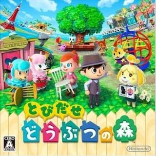 ニンテンドー3DS - 任天堂 3DS とびだせ どうぶつの森