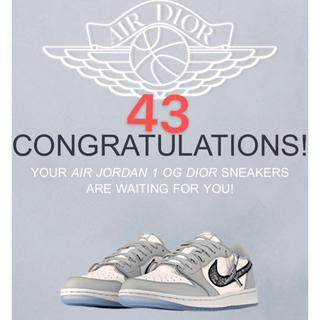 Dior - Dior x Nike Air Jordan 1 Low