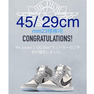 Dior - 【Dior × Nike】Air Jordan 1 High OG