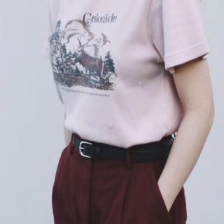 moussy - MOUSSY 新作 COLORADO Tシャツ ピンク