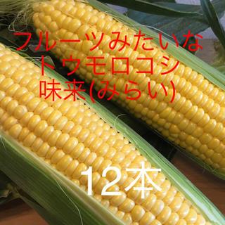 【 ワケあり 】 トウモロコシ( 味来 )   5kg   (野菜)