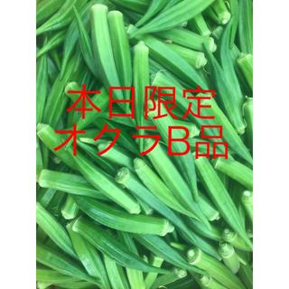 本日限定オクラB品(野菜)