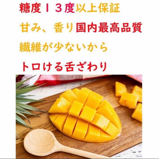 送料無料 完熟マンゴー 2kg 宮崎産 高糖度 JA 6玉〜10玉  高品質 食品/飲料/酒の食品(フルーツ)の商品写真