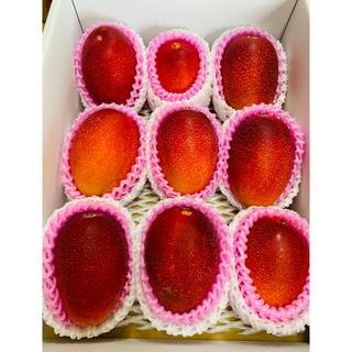 送料無料 完熟マンゴー 2kg 宮崎産 高糖度 JA 6玉〜10玉  高品質
