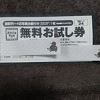 キタムラ(Kitamura)のスタジオマリオ 無料お試し券(その他)