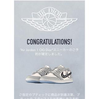 NIKE - Nike Air Jordan 1 OG Dior エア ジョーダン ディオール