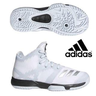 adidas - アディダス adidas バスケットシューズ
