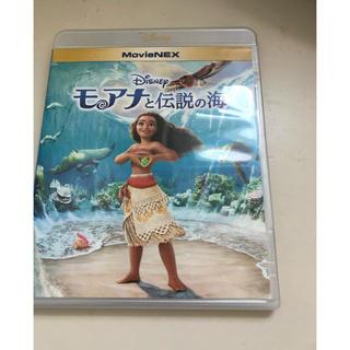 ディズニー(Disney)のディズニー☆モアナと伝説の海 DVDとケース(アニメ)